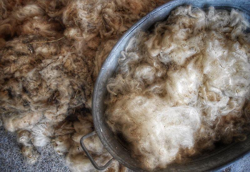 Rohwolle Waschen